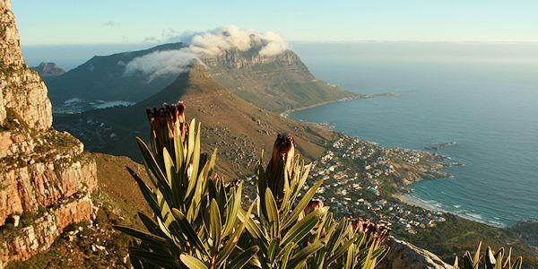 Randonnée sur la Montagne de la Table en Afrique du Sud