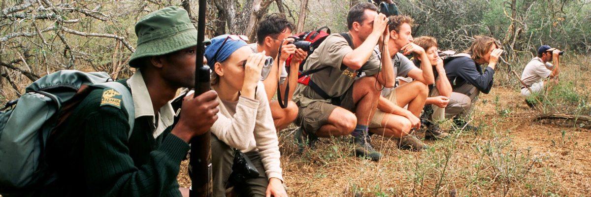 observation en safari a pied