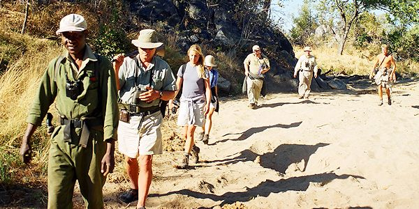 safari a pied dans le parc de hwange au zimbabwe