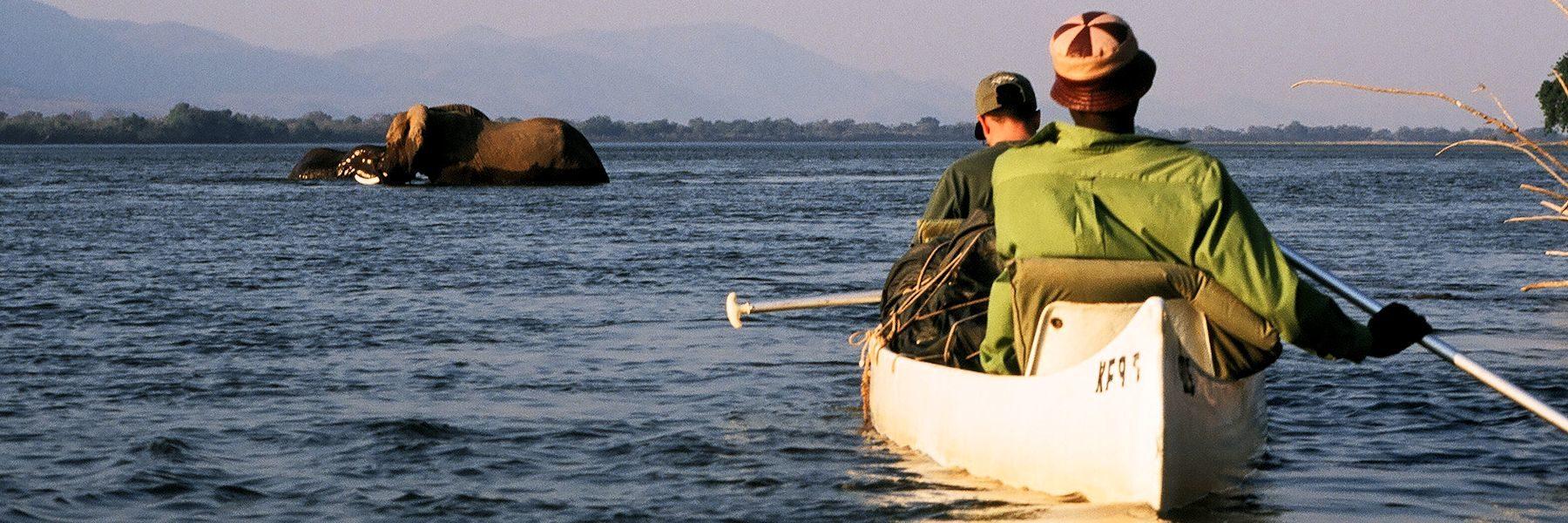 safari en canoe sur le zambeze