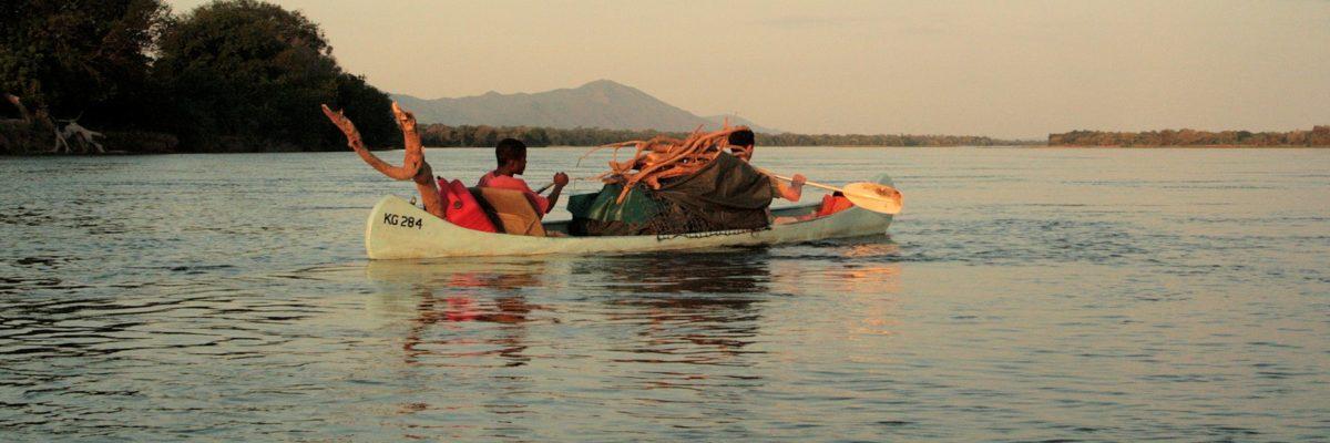 safari en canoe en autonomie - collecte du bois pour le feu